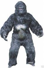Gorilla6wmcj5